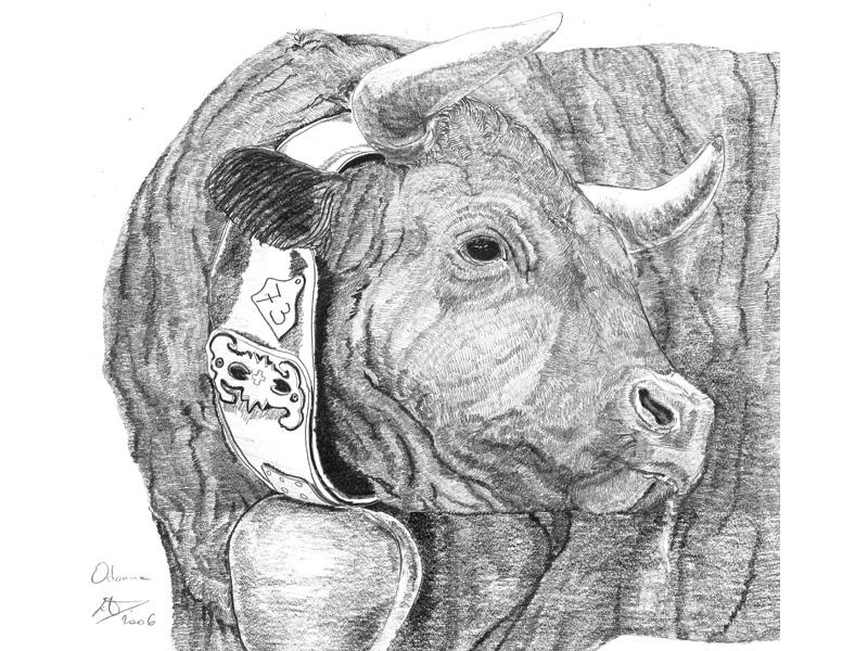 emd_reines_dessins_16